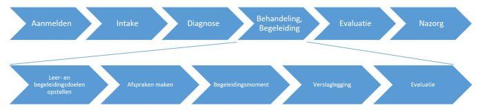 Werkproces voorbeeld blogreeks van visie naar blended hulpverlening met ehealth